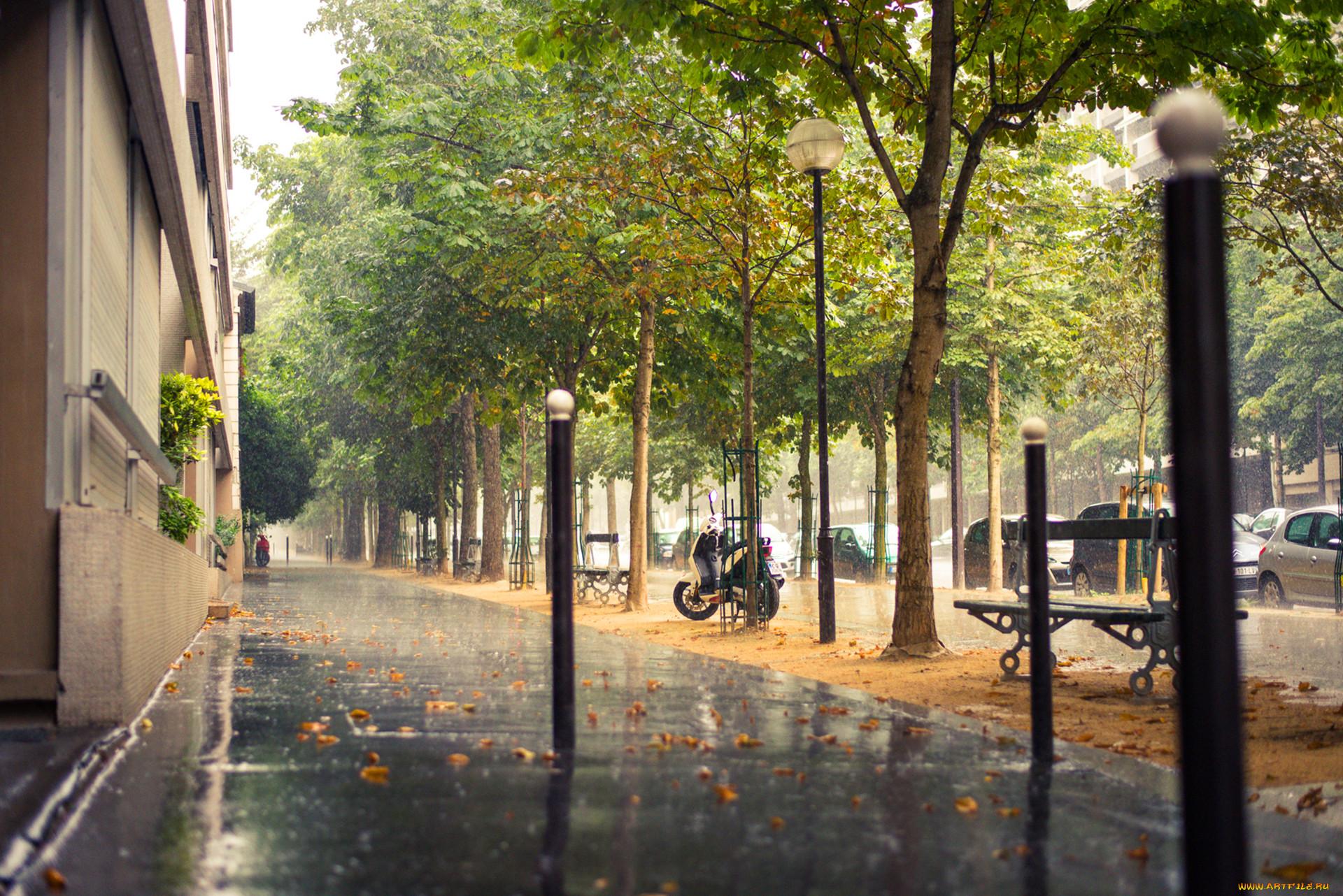 окурки дождь в городе обои и картинки устройства включает